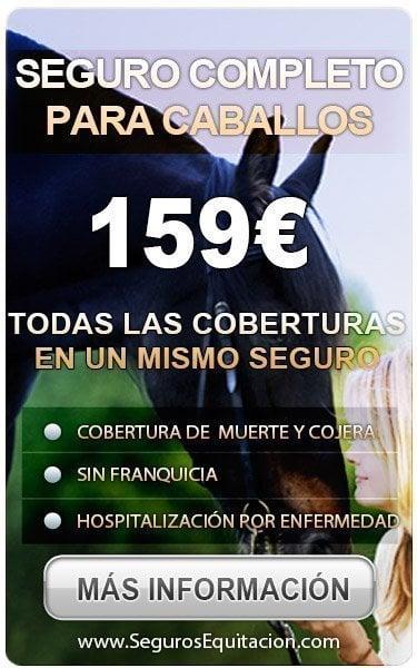 seguro completo por 159
